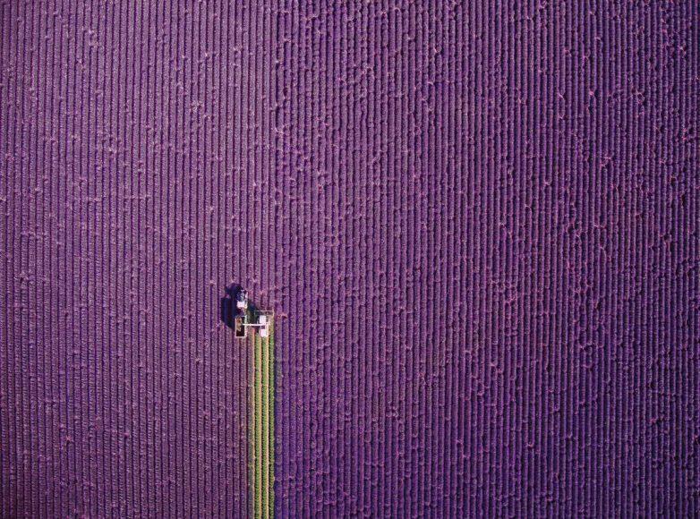 """Beschnitt für den Sommer: Auch der Londoner Fotograf Jerome Courtial freut sich nach zweijähriger Erfahrung als Drohnenfotograf über den ersten Platz in der Kategorie """"Natur""""."""