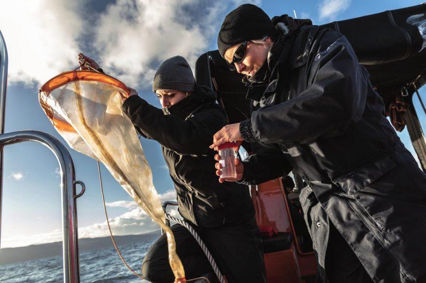 Plankton-Probenahme. Mit 1.200 Kleinstlebewesen pro Kubikmeter ist die Lieblingssuppe des Hais zu dünn. Schlechte Voraussetzungen, um den Hai zu finden. || ISO 100 | f/6,3 | 1/125 s | beide EF 4/24-105 mm L IS II USM.  © Robert Marc Lehmann