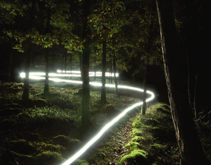 Verschlungene Pfade ziehen sich allerorten durch den Nationalpark Kellerwald- Edersee und gewähren immer wieder eindrucksvolle Aussichten. Das Lichtband entstand hierbei durch das Abgehen mit einer auf das Objektiv gerichteten Taschenlampe. // ISO 400 / f/5,6 / 45 s © Thomas Bölke