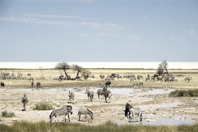 Photographie Namibia