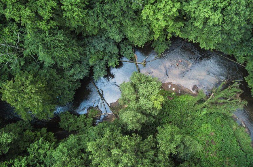Einer der schönsten Flüsse Deutschlands von oben. Jedoch sieht er nur von außen gut aus. Hier sollten eigentlich 100 verschiedene Tierarten leben. Robert fand zusammen mit Wissenschaftlern des Senckenberg-Institutes nur sieben. || ISO 200 | f/2,2 | 1/50 s | 26 mm | DJI-Drohne