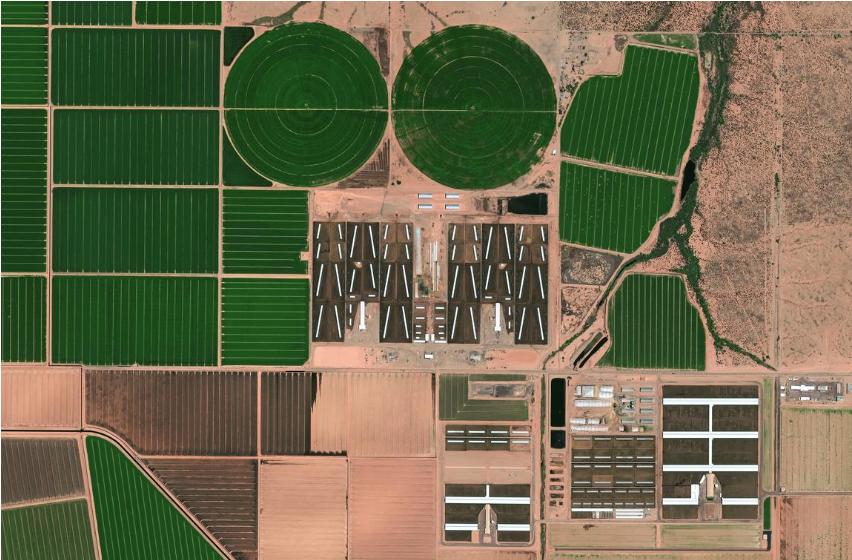 USA: Südlich von Phoenix, Arizona, fließt der Gila River, dessen Wasser intensiv für die Bewässerung von Feldfrüchten für die Rindermast genutzt wird. In der Gila-Wüste werden im Sommer Temperaturen bis zu 50 °C erreicht, was zu hohen Verdunstungsraten führt, weshalb nur ein kleiner Teil des Wassers den größeren Colorado River erreicht. ©EUSI