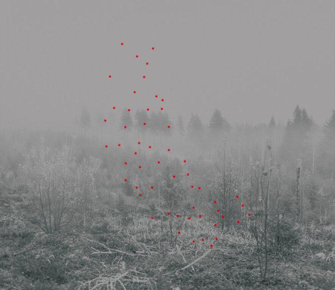 © Jaakko Kahilaniemi, 54 Soil Solutions, 2017 | Courtesy Persons Projects / Helsinki School & davidbehning galerie