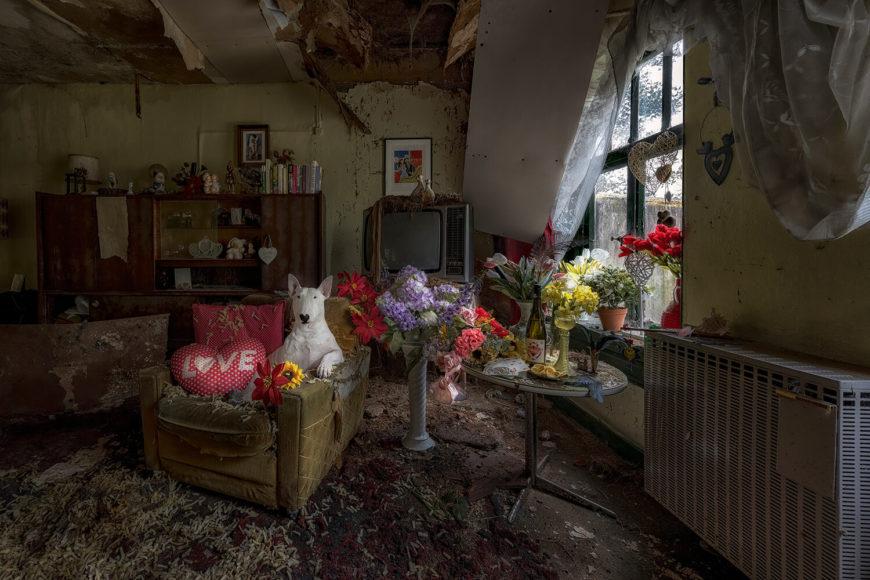 "3. Platz Kategorie ""Projects & Portfolios"": Alice Van Kempen - Furbex © Alice Van Kempen, Urban 2019 Photo Awards"