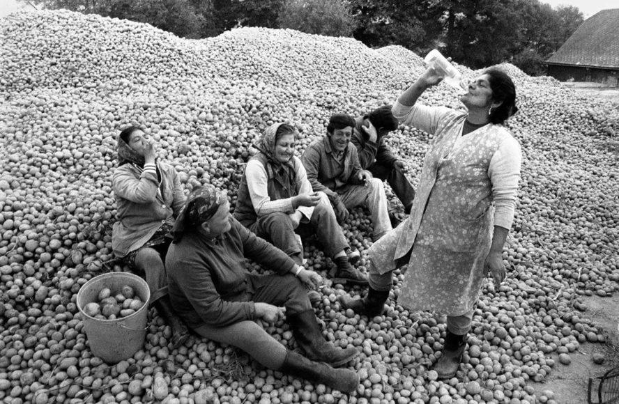 Galerie Koschmieder, Jindrich Streit, Potato Harvesters, 1985