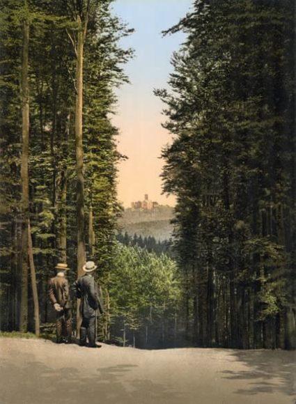 Eisenach, Hohe Sonne mit Blick auf die Wartburg / © Collection Marc Walter und TASCHEN