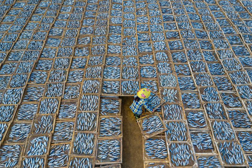 Drying Fish. © Khanh Phan, Vietnam, Category Winner, Open, Travel, 2021 Sony World Photography Awards