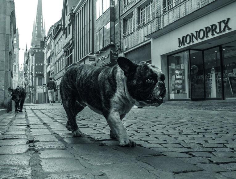 Fotograf: Olaf Slaghekke