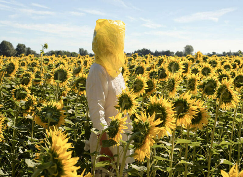 Elina Brotherus, Portrait Series (Gelbe Musik with Sunflowers), 2016, aus der Serie The Baldessari Assignments, Art,Us Collectors, Collective, © VG Bild-Kunst, Bonn 2020.
