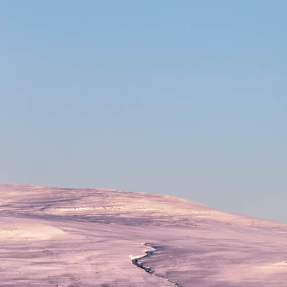 © Tiina Törmannen, Tyyni, Finlande, 2014-2020